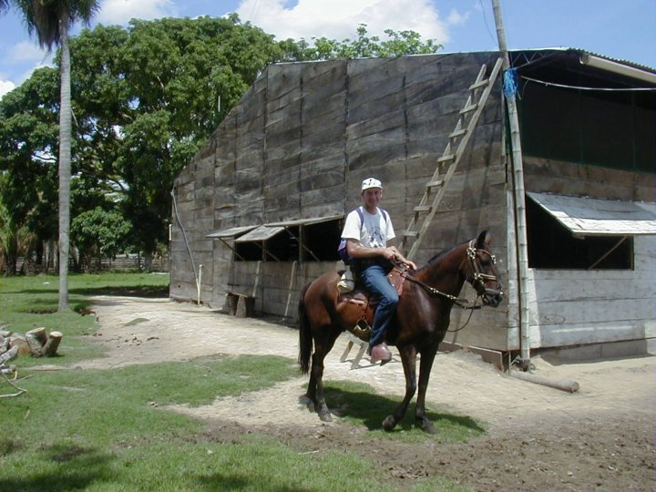 One way to catch horse flies – get yourself a horse!